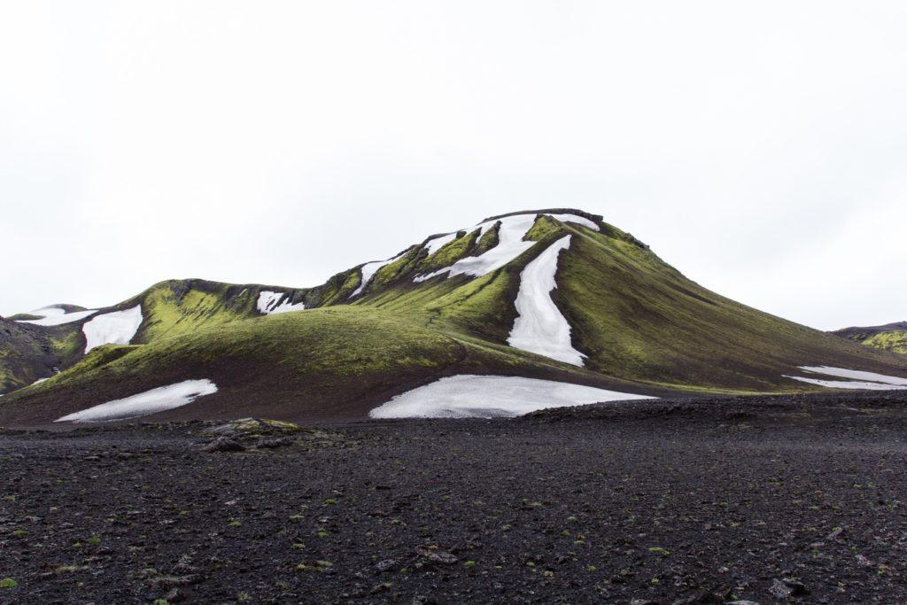 subpolare-zone-tundra
