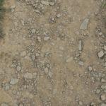 Bodenarten - Definition, Unterteilung, Eigenschaften