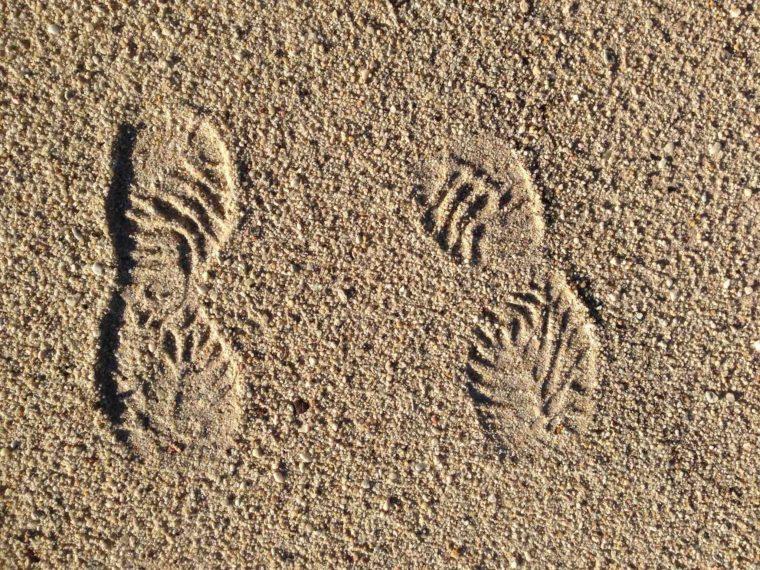 bodenarten-sand