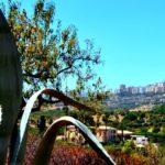 Neuer Themenblock: Klima und Vegetation im Mittelmeerraum