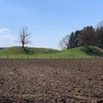 Glazifluviale Ablagerungen - Sander, Kames und Oser