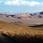 Höhenstufen der Anden - Quiz